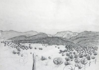 PecosCanyon